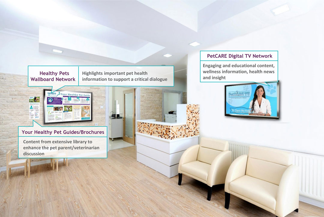 petcare-tv-waiting-room