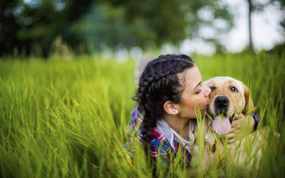 We Love Animals!