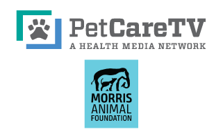 PetCareTV, the Largest Veterinarian Office Education Network, Announces a Partnership with Morris Animal Foundation, a Global Nonprofit Dedicated to Improving Animal Health
